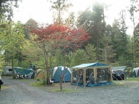 朝霧高原キャンプ場のテントサイトの写真