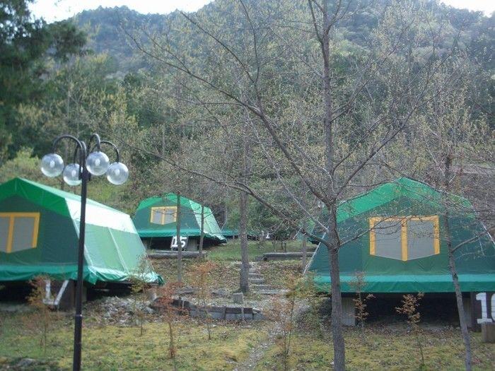 丹波悠遊の森のテント