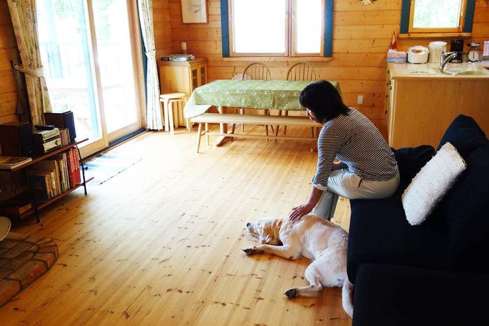 ゆがふ『八ヶ岳』のコテージでペットと一緒に宿泊している人の写真