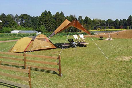 芝生に貼ってあるテントとタープ