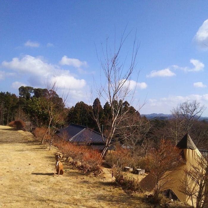オートキャンプ場志駒の園内の写真