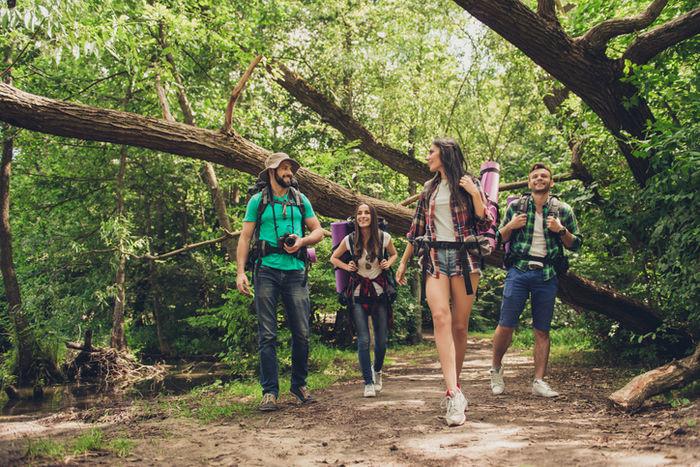 山でハイキングを楽しんでいる人たちの写真