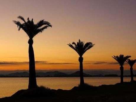 マイアミ浜オートキャンプ場からの海沿いの夕焼けの写真