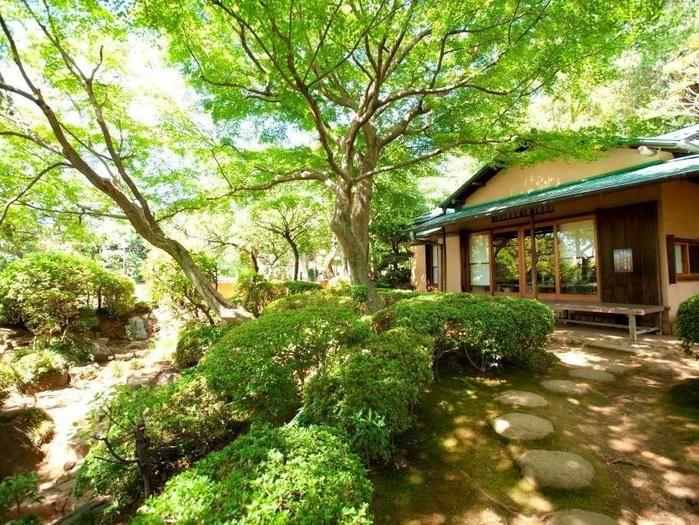 公園内の日本庭園の写真