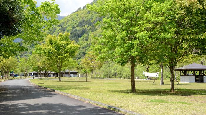早川町オートキャンプ場の芝生の広場の写真