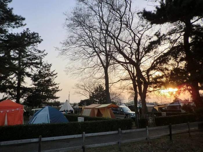 マイアミ浜オートキャンプ場のテントサイトの写真