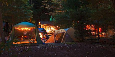 河津オートキャンプ場のテントサイトの写真