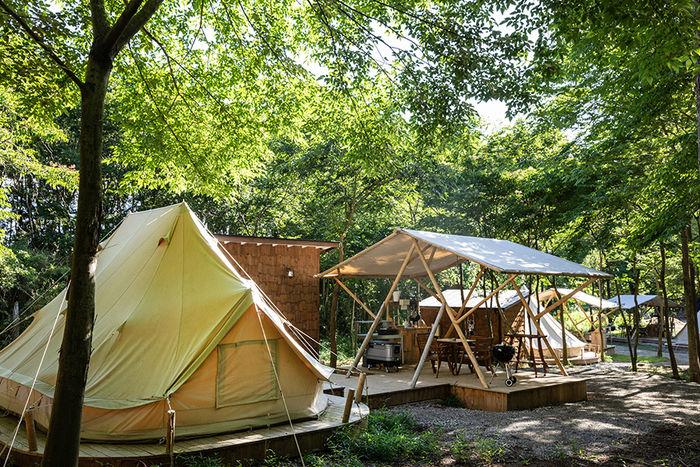 東京クラシックキャンプのテントの写真
