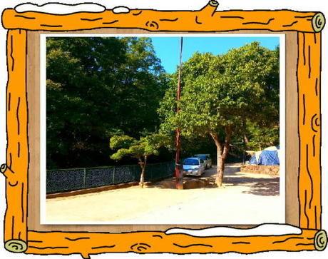 一里松キャンプ場 フリーサイト 宿泊キャンプ