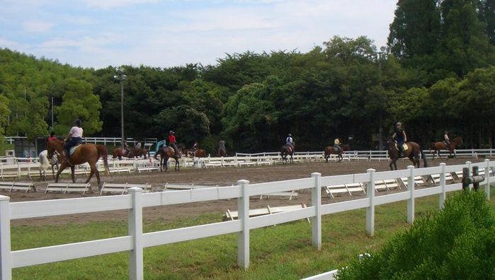 服部緑地で乗馬を楽しんでいる写真