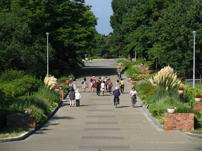 服部緑地の園内を歩いている写真