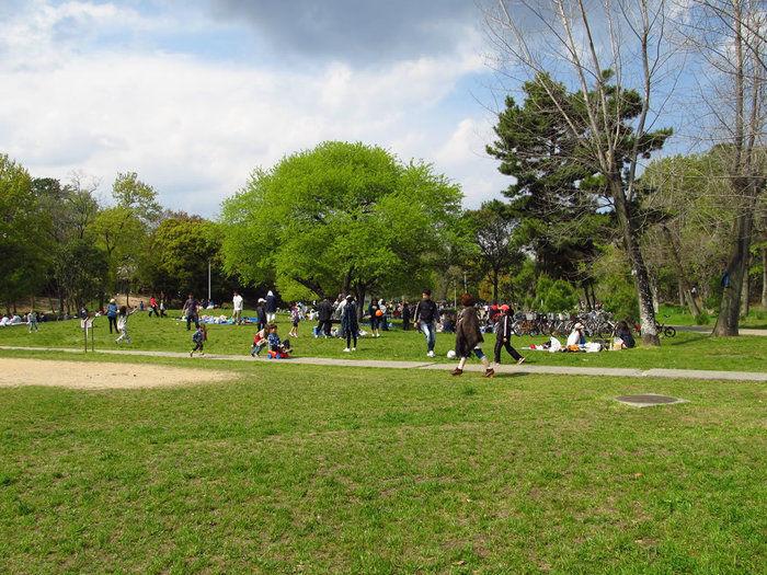 服部緑地の広場で遊んでいる写真