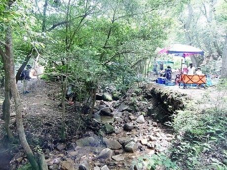 自然の森ファミリーオートキャンプ場で自然の遊びをしている人たちの写真
