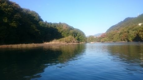 森と湖の写真