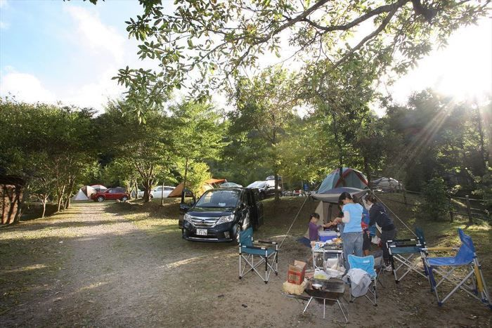 山鳥の森オートキャンプ場 オートキャンプサイト