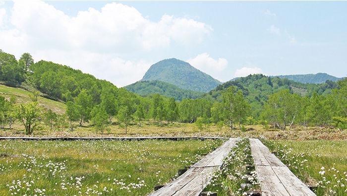 志賀高原周辺の野原