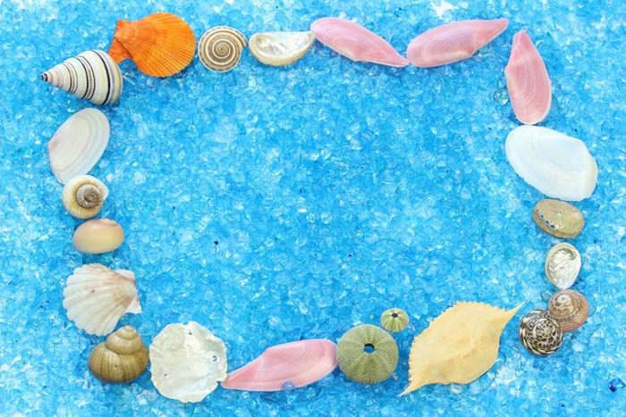 グルーガンでコラージュした貝殻