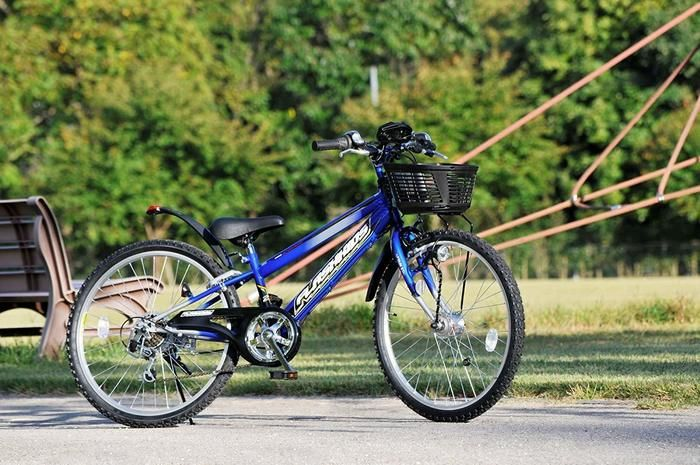 キャプテンスタッグの自転車