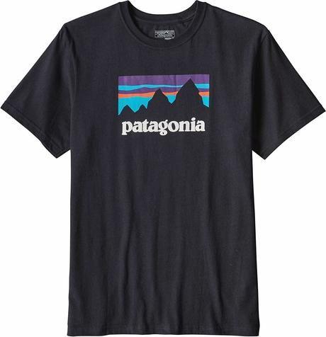 パタゴニアのTシャツの写真