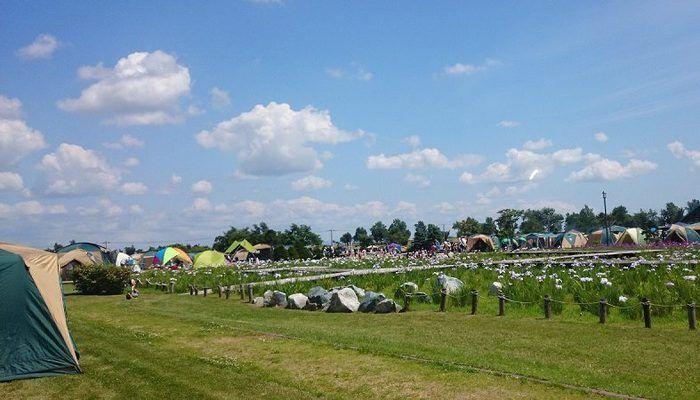 芝生の広がっているテントサイトの写真
