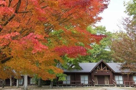 休暇村 帝釈峡の紅葉