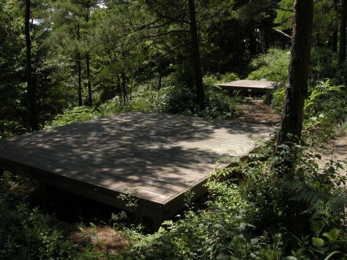 パーク 大正 池 グリーン