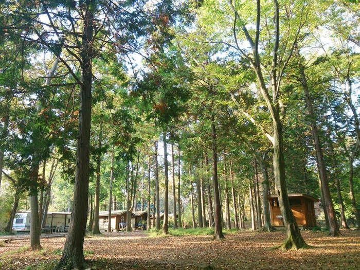 フォンテーヌの森のオートキャンプサイトの写真