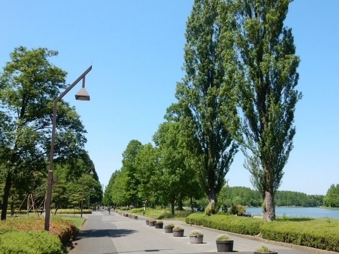 水本公園内の写真