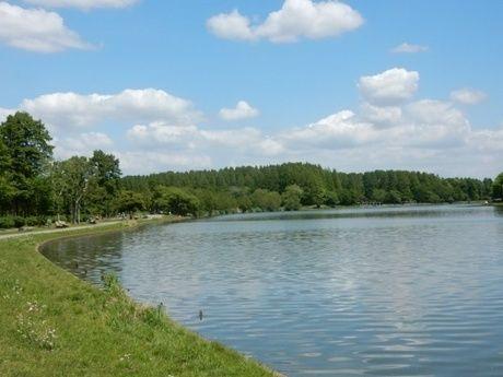 水元公園内にある池の写真