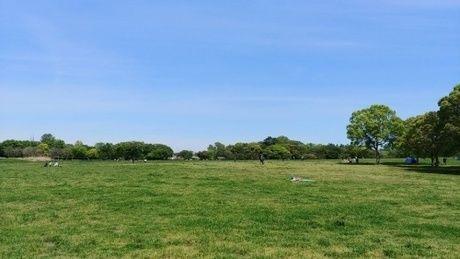 水元公園のバーベキュー広場の写真