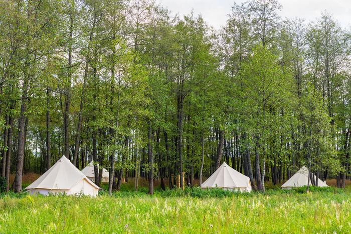 林の中にあるテントサイトの写真