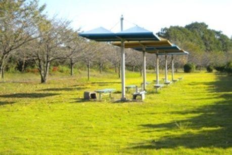 併設された公園施設の写真