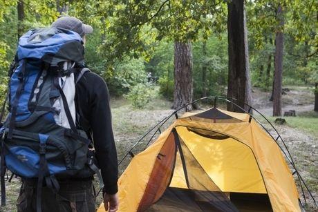 テントサイトにテントが貼ってある写真