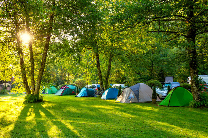 たくさんテントが貼ってあるテントサイトの写真