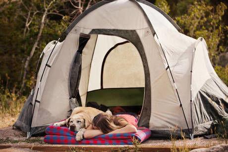犬とキャンプする女の子