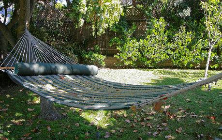 木陰に吊るしてあるハンモックの写真