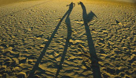 地面に走っている影が写っている写真