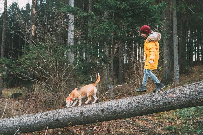 ダウンジャケットを着て犬を散歩している少年