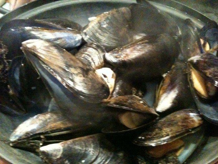 パタゴニア ムール貝