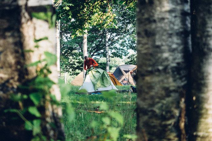 草の上でテントの組み立てている男性の写真