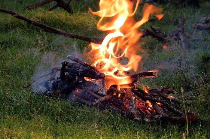 木の枝を燃やしている様子の写真