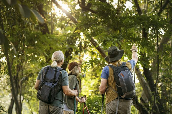 リュックを背負ってハイキングをしている人達の社員