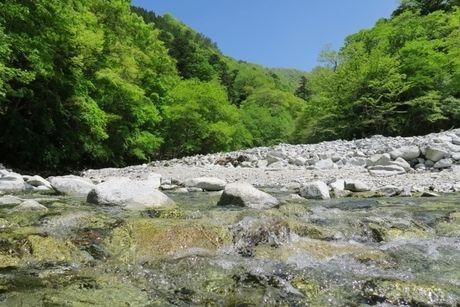 綺麗な川と山の写真