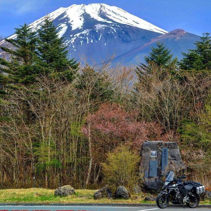 富士山スカイラインの紅葉