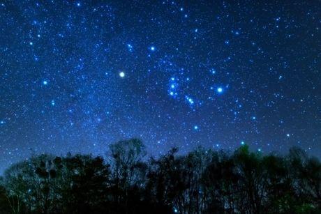 星空に浮かぶオリオン座