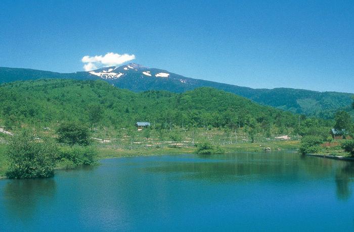 津南キャンプ場の景色