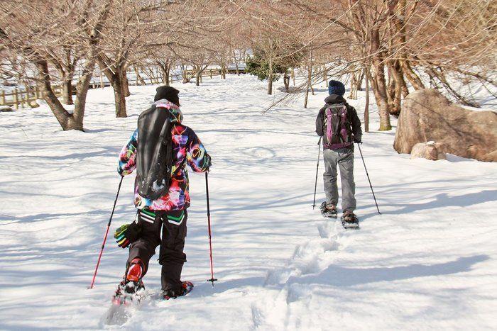 スノーシューを履いて歩いている男性達