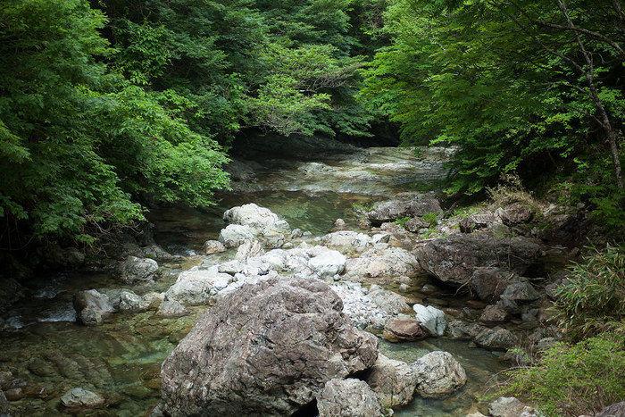 山の中に流れる川