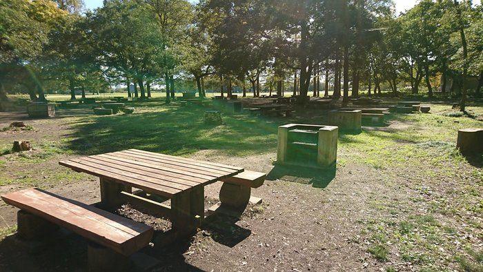 秋ヶ瀬公園の炊事場周辺