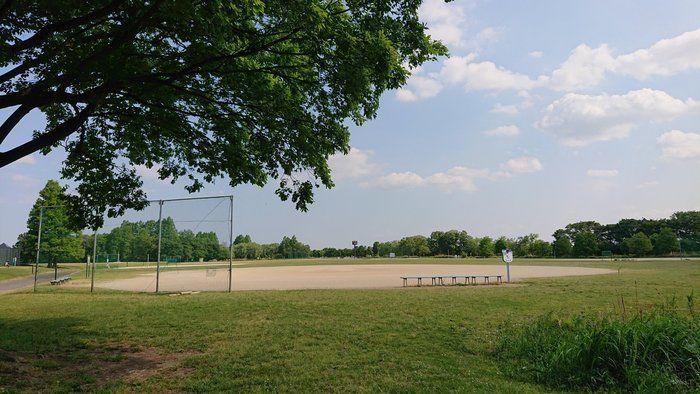 秋ヶ瀬公園のグラウンド